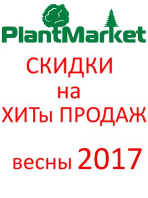 ХИТ   ПРОДАЖ  весна 2017