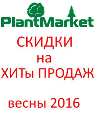 ХИТ   ПРОДАЖ  весна 2016