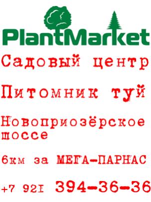 Садовый центр — Питомник туй — РАСПРОДАЖА